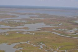 Aerial survey of Middle Bay (top part of picture). Image