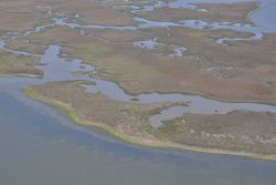 Aerial survey of Clyde's Cut, a shallow water pass between Bayou Heron and Middle Bay. Image