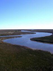 Gautier Bayou (bottom) flowing into Bayou Heron (top). Photo