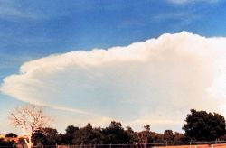 Anvil of large cumulonimbus thunderhead during early stages of developing storm. Image