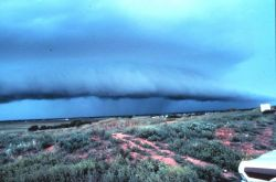 Approaching thunderstorm with lead gust front Image