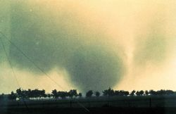 Altus Tornado. Image