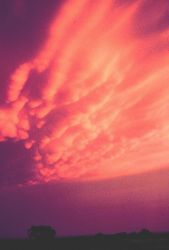 A blazing sunset. Image