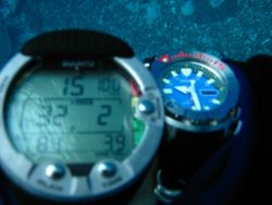 Diver's watch Photo