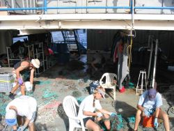 Sorting and cataloging data on nets to identify source of net material Photo