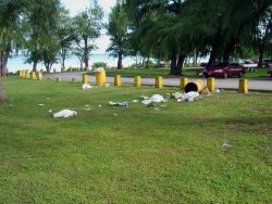 Careless dispersal of garbage in coastal regions can lead directly to degradation of the marine environment. Photo