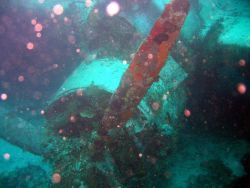 Closeup of Emily Flying Boat engine and propeller. Photo