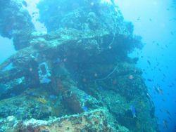 Wreckage from the Fujikawa Maru. Photo