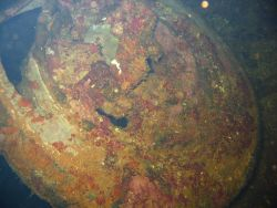 A truck tire on the Hoku Maru. Image