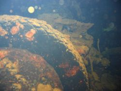 A truck tire on the Hoku Maru Image