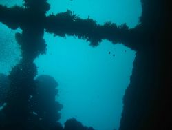 A scene on the Unikai Maru. Image