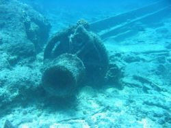 Windlass from modern ship wreck on Pearl and Hermes Reef. Photo