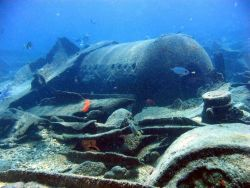 Boiler from modern ship wreck on Pearl and Hermes Reef. Photo