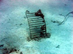 Debris from early Twentieth Century wreck on Pearl and Hermes Reef Photo