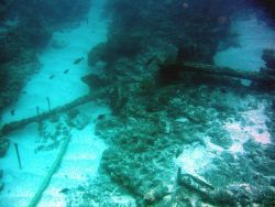 Anchors from the ship wreck of a whaling vessel on Pearl and Hermes Reef Image