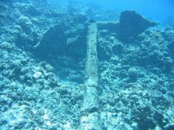 Anchor from the ship wreck of a whaling vessel on Pearl and Hermes Reef Image