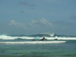 Annuu shipwreck seen in the surfline as large waves pummel the reef. Image
