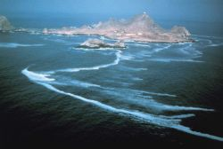 A view of the Farallon Islands Image