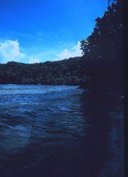 Shoreline of American Samoa Photo