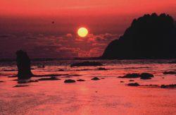 Sunset along the Olympic Coast Photo