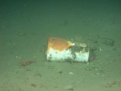 A ceramic pitcher sits on the seafloor next to the Portland's hull Photo