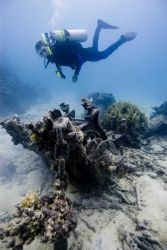 Diver investigates the anchor windlass at the OSHIMA shipwreck site. Photo