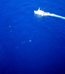 NOAA Ship DAVID STARR JORDAN as seen from MD500 helicopter during marine mammal studies in the tropical east Pacific Ocean Photo