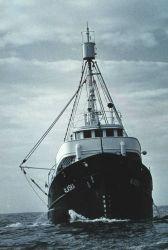 Fish and Wildlife Service Patrol Boat ALASKA. Photo