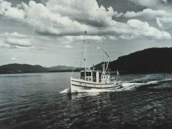 The Fish and Wildlife Service Patrol Boat BLUE WING near Craig on the Prince of Wales Island. Photo