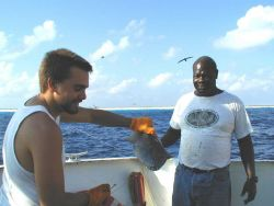 Deck hand Mike Theberge and seaman surveyor Leroy Johnson with fish caught off Clipperton Island during STAR 2000. Photo