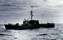 Coast and Geodetic Survey Ship BOWEN, named for William Bowen who lost his life attempting to save three drowning shipmates from the Coast and Geodeti Photo