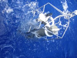 CTD equipment is being pulled up manually off the Mexican ship BIP during a coastal oceanographic cruise off the waters of Xcalak between NOAA and ECO Photo