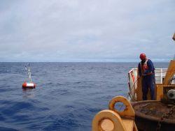 Deploying TAO buoy. Photo