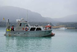 Jensen survey launch and rigid-hull inflatable boat supporting tide gage installation Photo