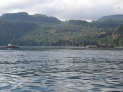 Tug and barge in the Inside Passage. Photo