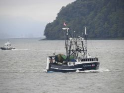 Small fishing boat PACIFIC FUTURE in Columbia River Photo