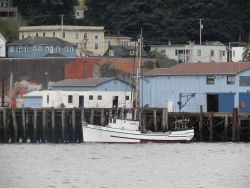 Small fishing boat SONJA tied up at Astoria Photo