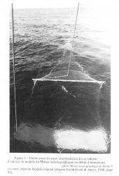 Figure 7 Photo