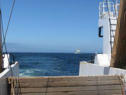 NOAA Ship BELL SHIMADA astern of the NOAA Ship MILLER FREEMAN. Photo