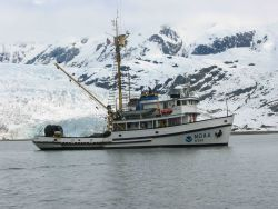 NOAA Ship JOHN N Photo