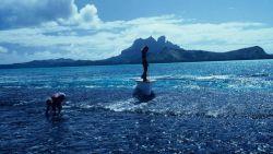 Tourist shelling during outrigger excursion to Bora Bora reef. Photo
