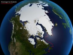 Arctic sea ice rapidly melting Image
