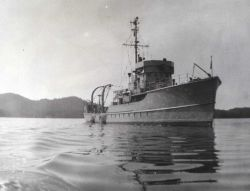 Coast and Geodetic Survey Ship BOWIE. Photo