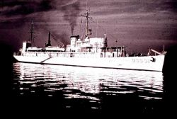 Coast and Geodetic Survey Ship PIONEER Photo