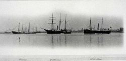 Coast and Geodetic Survey Ships GEDNEY, PATTERSON, AND MCARTHUR. Photo