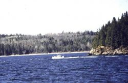 Survey launch off of PEIRCE Photo