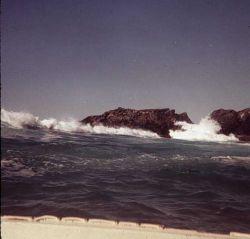 Note bow of Boston whaler Photo