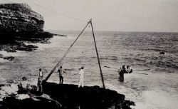 Landing on Necker Island Photo