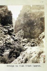 Dwarfed in an Arizona canyon Photo