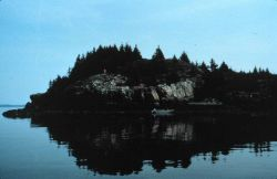 A rocky island on the east side of Penobscot Bay Image